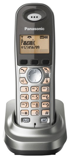 Panasonic KX-TGA 731EG - Silver - Additional Handset