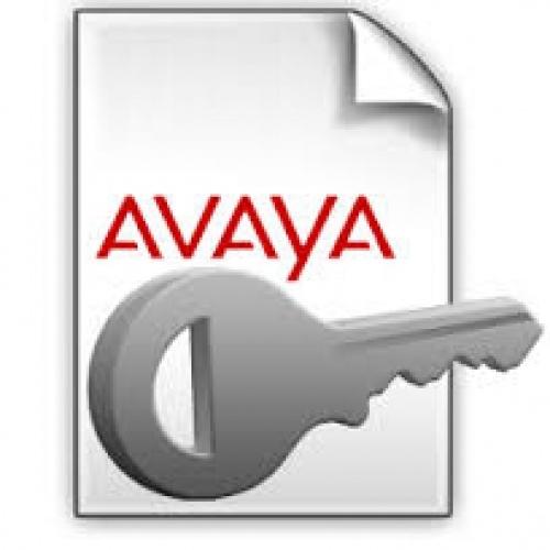 Avaya IP Office IP500 R10+ SIP Trunk License