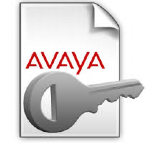 Avaya User License