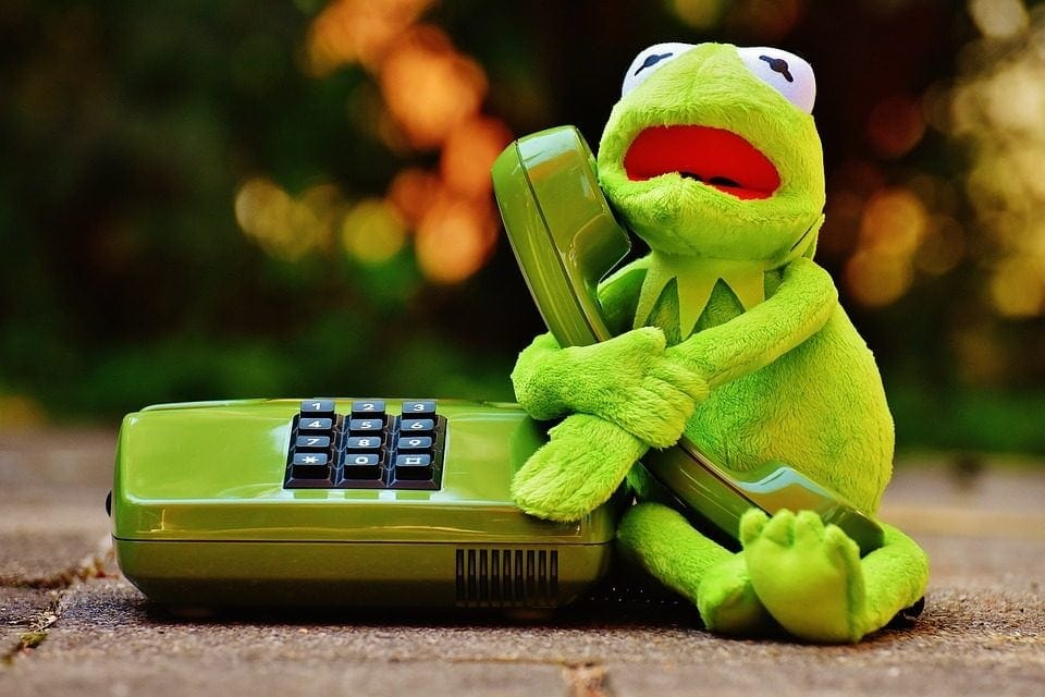 image of kermit frog holding a corded telephone